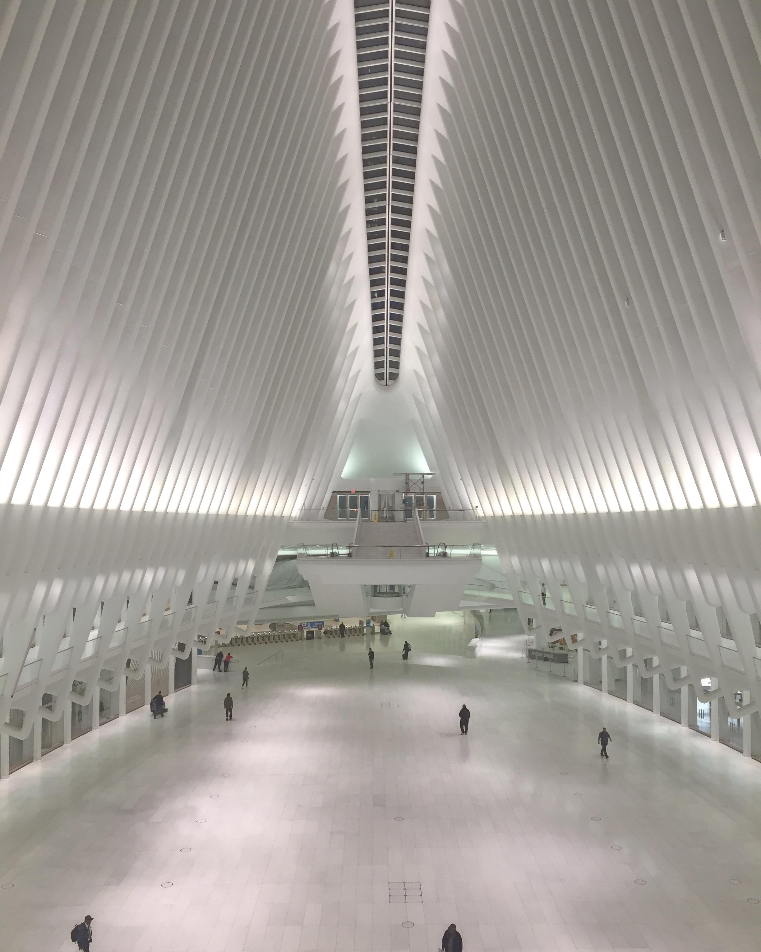 oculus-pic